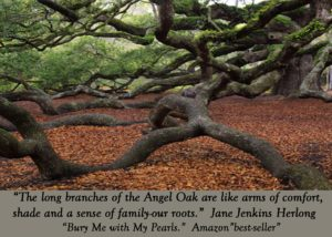 The Long Branches of the Historic Angel Oak Tree